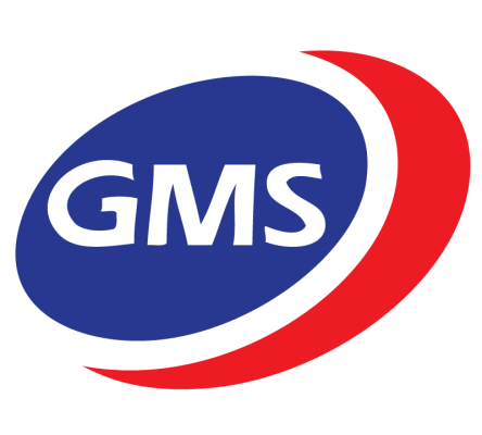 GMS Interneer logo